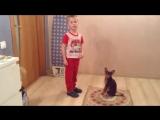 Ярик (4,5 года) и Тигра (8 лет). г. Санкт-Петербург