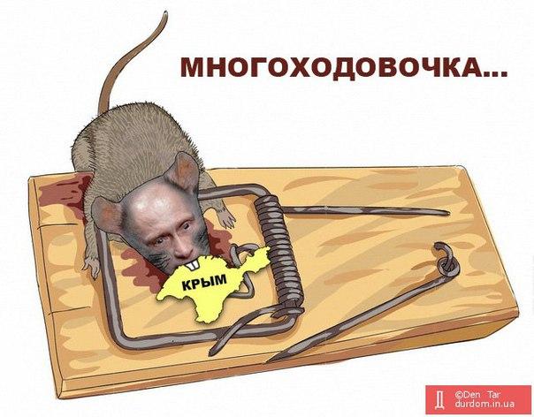В МИД Украины предупредили наблюдателей СНГ об ответственности за посещение псевдовыборов в Госдуму РФ в оккупированном Крыму - Цензор.НЕТ 8250