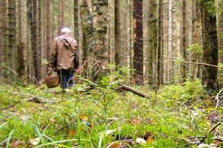 В горах Зеленчукского района потерялась жительница Черкесска