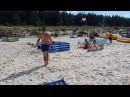 Дикий кабан искупался в море и выбежал на пляж