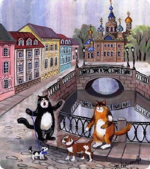 Картинки котов питера