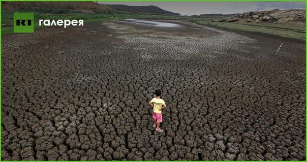 Северо-восток Бразилии столкнулся с сильнейшей за последние 30 лет засухой