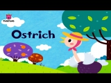 O - Ostrich - ABC Alphabet Songs - Phonics - PINKFONG Songs for Children