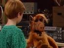 Alf Quote Season 2 Episode 21_Alf_Brayan_Уроки борьбы
