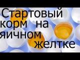 Стартовый корм на яичном желтке, How to make fish food, c