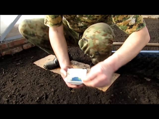 Как сеять редис быстро с помощью маркера. Sow radishes marker