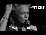 Wallis Bird - I Can Be Your Man (live bei TV Noir)