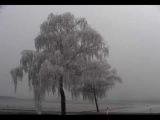 Lux Incerta - Winternity (french doom metal band)