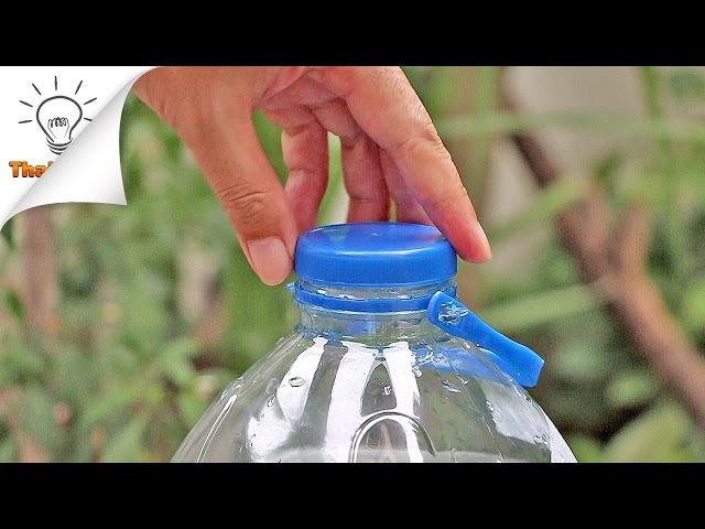6 Plastic Bottle Life Hacks You Should Know