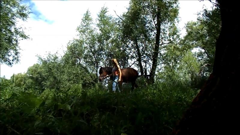 Видео дня № 2 Прогулка Криса и Рэкки