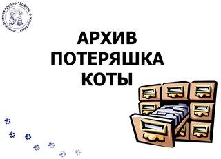 Сайт потеряшки разместить объявление объявления куплю антикварные штампы