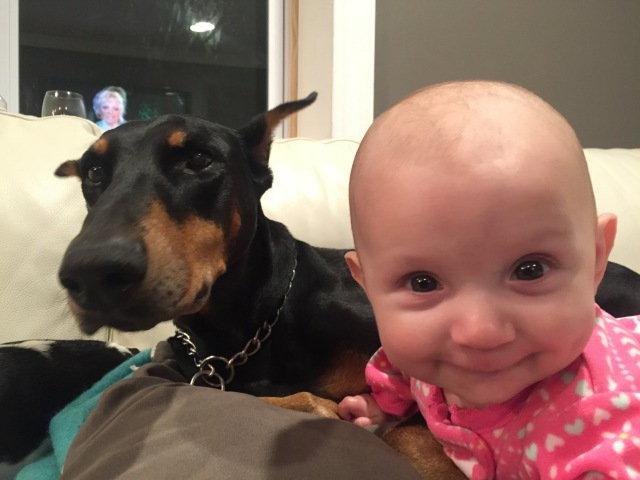 Doberman Dog Gives Baby Hugging Kissing And Playing Happy Together - Dogs And Baby Videos 2016