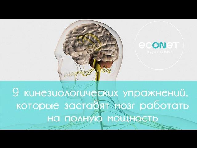 9 кинезиологических упражнений заставят мозг работать на полную мощность