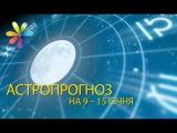 Астропрогноз на 9 -15 января от Магдалены Мочиовски – Все буде добре. Выпуск 945 от 0...