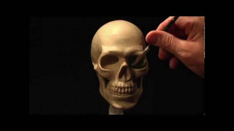 Sculpting a Human Skull in Clay_part-3 of 3