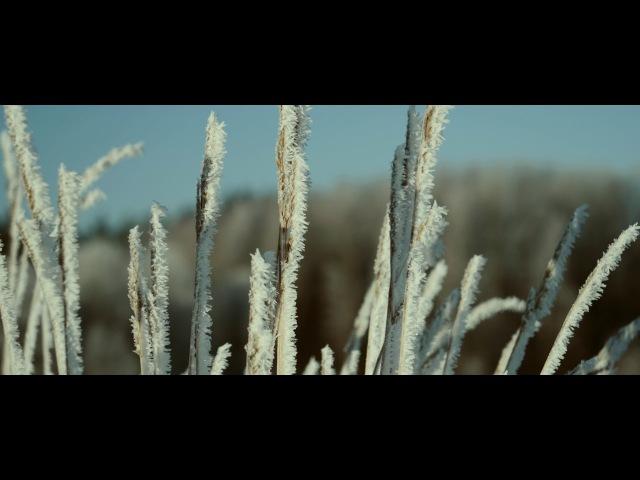 Panasonic LUMIX GH5 4K Winter's Grip
