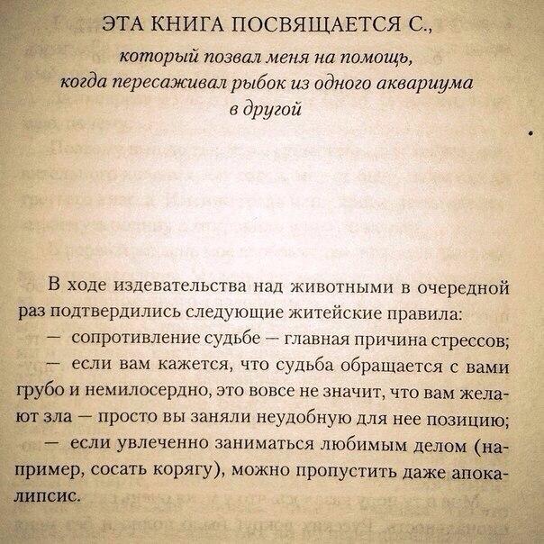 https://pp.vk.me/c636431/v636431001/1f969/u8wBBY8t0yY.jpg