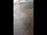 Дождик не хилый ливанул... (Из серии отдых на Медвежьем озере)