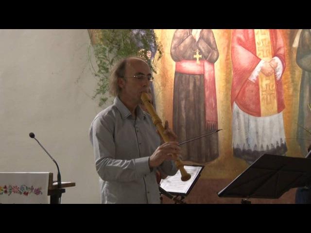 Trio Sonata in D major | RV 84 | Imre Lachegyi, Balint Karosi, Sebastian Consort