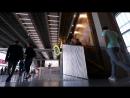 Ирина Корина об инсталляции «Хвост виляет кометой»