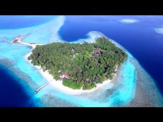 Прекрасные Мальдивы из Крыма: Прекрасные Мальдивы из Симферополя за 195000 руб.