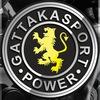 Gattaka Sport | Спортивное питание | Тюмень