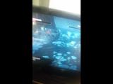 Баг в игре Ведьмак 3