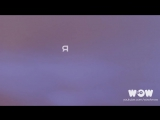 Юрий Хой (Сектор Газа) - Милая (Альбом Вой на луну) _ Премьера песни _ Видео