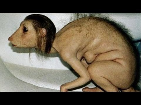 девушка которая прожила 17 лет с крысами фото