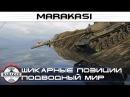 Шикарные позиции подводный мир в World of Tanks