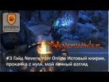 #3 Гайд Neverwinter Online Истовый клирик, что делать после 60го уровня?