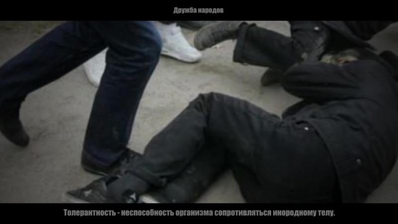 Кричащие и воющие чеченцы нападали и избивали людей в Воронеже. Толерантность и дружба народов!