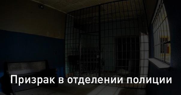 Загадки Сибири: обзор телеканала «Продвижение»