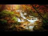 Relaxing Celtic Music: Fantasy Music, Flute Music, Harp Music, Beautiful Music, Relaxing Music ★86