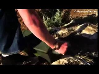 Фильм Песчаные акулы (Лучший трейлер 2011)