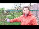 Княжик Арочный туннель опора для клематисов 24 Весна часть 5