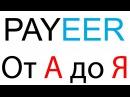 Payeer Ввод Вывод Обмен Перевод Регистрация Payeer кошелька