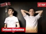 Живые Собаки Качалова (23.09.2013)