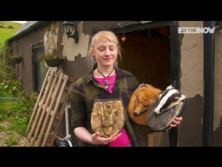 веганский дизайнер создаёт аксессуары из животных сбитых на дороге...
