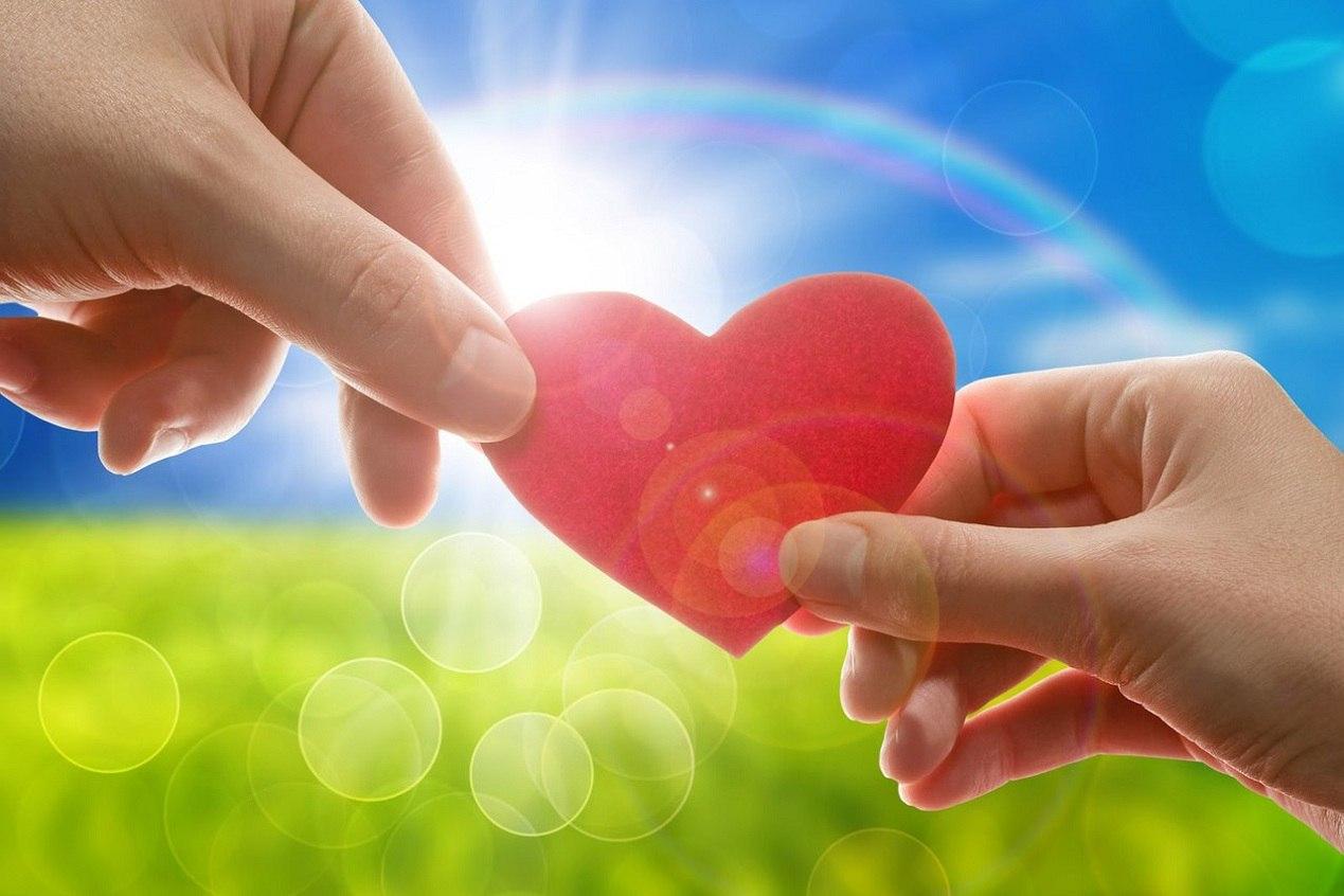 Чат Любовь