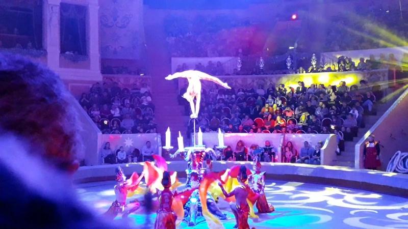 Цирк (гимнастка в центре внимания)