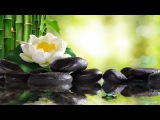 Relaxing Piano Music Soft Sleep Music, Water Sounds, Meditation Music, Relaxing Music