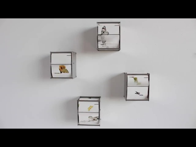 Butterfly Flip Book Installation