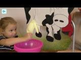 056 Доим корову Развитие мелкой моторики Netyasama Развивающие игры для детей