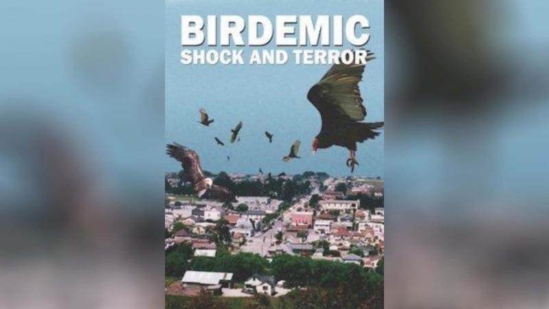 Птицекалипсис Шок и Трепет 2010 Birdemic Shock and Terror