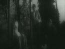 В день свадьбы (1968) [ Советское кино, Кинолюкс ]
