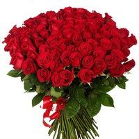 flora_royal_rose