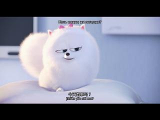 【】Тайная жизнь домашних животных 爱宠大机密 (普通话) 【】