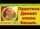 Практика Коды Дуйко Делает кокон белым Египет 2017. А. Дуйко. Эзотерика Кайлас.