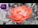 How to Change COLOR of an object in a video in Adobe Premiere Pro (HSL Secondary Lumetri Tutorial)